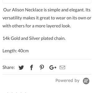 Victoria Emerson Jewelry - NWT Victoria Emerson Necklace